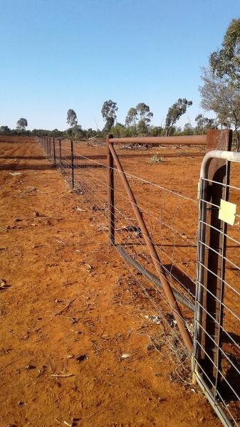 Fence (3)